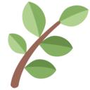 TS Admissions avatar
