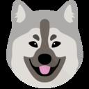 Pip avatar