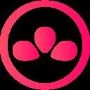 Team Liven avatar