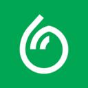 dumpling team avatar
