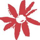 Gidget Foundation avatar
